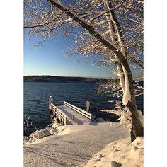 Morning sun March snow #islandlife #mainemorningrun