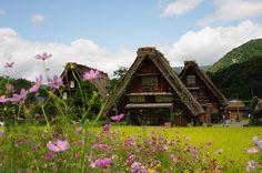 in Shirakawagou by Mamada Sara, via Flickr