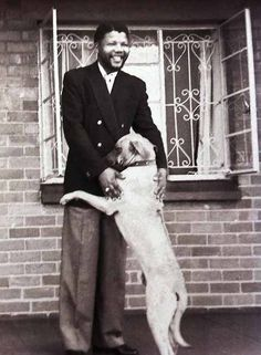 Nelson Mandela with his Rhodesian Ridgeback! I love my RR Copper! I'm interested to know what his dogs name was. Nelson Mandela, Rhodesian Ridgeback, Vintage Dog, Mundo Animal, Charlie Chaplin, Salvador Dali, Dog Photography, Vintage Photography, Dog Photos
