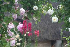 Thatched Heaven at the Botanic Shed Rustic Barn Retreat in Bampton