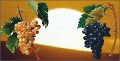 Cultivated and produced in the same way for thousands of years- sun dried! In par with dietary and healthy concerns they're brough to you through the state-of-the-art Added Value processing, of the Couniniotis Grp. of Companies! Sun Dried, Raisin, Fruit, Healthy, Health