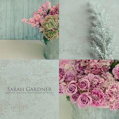 Creative {Aspirations} - Sarah Gardner Photography {ART BLOG}