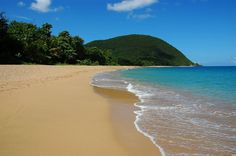 my favorite beach on this planet: Grande Anse de Deshaies en Guadeloupe - French Caribbean.