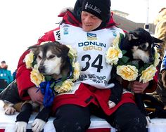 This will be me and my dogs after a race #dreaming  Dallas Seavey youngest Musher to win Iditarod dog sled race
