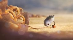 "New and Adorable Images of Disney•Pixar's ""Piper"" Emerge"