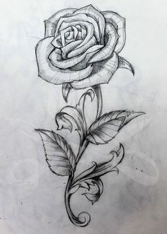 Resultado de imagen de rose tattoo black and white