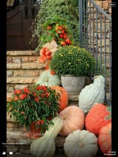 I like the pumpkins