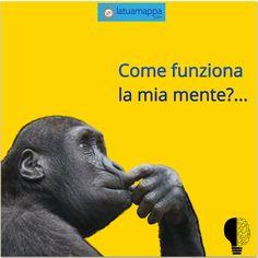 Tony Buzan, Life Plan, Brain, Mindfulness, Study, Memories, How To Plan, Blog, Aurora