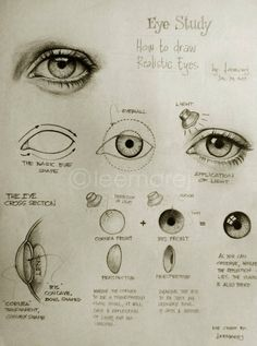 Eye Study - How to draw realistic eyes.
