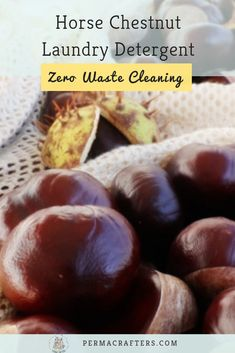 Learn how to make horse chestnut laundry detergent, the ultimate zero waste cleaning recipe that skips the packaging, carbon emissions, and wasted money.