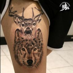 Realistic wolf added to this amazing animal collection, the deer tattoo on top is healed, one more bear will be add on, stay tuned  Done by @master__shark Done at @hontattoostudio #girltattoo #animaltattoo#cutetattoo #wolftattoo #realisticwolf #realistict