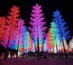 rainbow christmas trees.