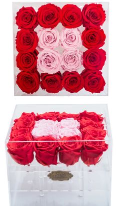 """Red and Light Pink Color Preserved Roses 