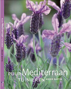 Dag 82/365 Lavendel doet je denken aan de Provence...