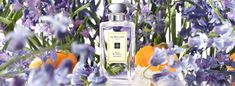 Jo Malone.  Wild Bluebell Collection.  Vibrant sapphire blooms in a shaded woodland. The delicate sweetness of dewy bluebells suffused with lily of the valley and eglantine, and a luscious twist of persimmon. Mesmerising