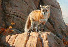fox painting by Edward Aldrich Wildlife Paintings, Wildlife Art, Illustrations, Illustration Art, Art Fox, Fox Painting, Animal Totems, Fine Art Gallery, Mammals