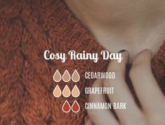 Cozy rainy day diffuser blend