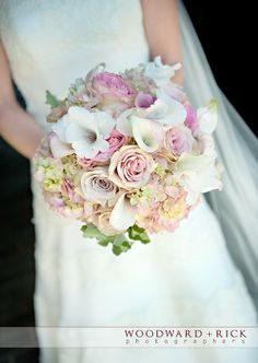 bloom room flowers - Google Search
