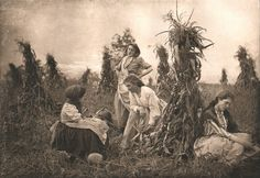 In the Harvest Field. Emma Justine Farnsworth. 1892