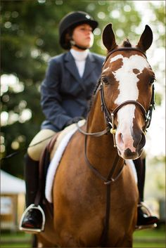Horse and Rider - Equestrian Photography