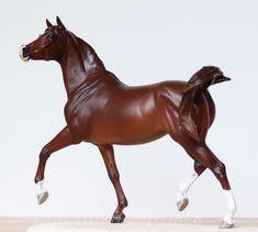 ✨Lajjina✨ [Commision/Trade Horse ]#modellpferd #modelhorsephotography #modelhorse #photograh #modellpferde #stute #breyer #schleich #mare…