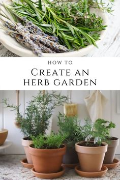 Start your own herb garden for your kitchen! Dried herbs serve a purpose, but fresh herbs elevate dishes to the next level. Herbs are simple to plant and easy to tend to, so check out this post with all of the step-by-step tips you need to create your own herb garden.
