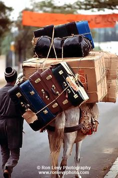 Excess baggage in Morocco. Kind of redefines carry-on limits...