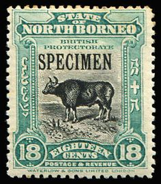 NORTH BORNEO 1909-23 Pictorials Centres in Black 1c to 24c set optd 'SPECIMEN' set #158s-176s, some with toning, 24c with adherence, otherwise fine mint, Cat £350. (13)  Anbieter Phoenix Auctions  Saalauktion Ausruf: 190.00 AUD