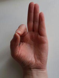 Síla muder – jednoduché jogínské pozice prstů ovlivňují náladu i zdraví | ProKondici.cz Body Fitness