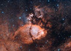 "https://flic.kr/p/ToS26c | Fish Head Nebula | IC1795 auch Fischkopfnebel genannt, dabei handelt es sich um ein Sternentstehungsgebiet im Sternbild Kassiopeia. Aufgenommen in Bicolor Ha und OIII  distance 7500 Lj  bicolor Equipment: TS 10"" f/4 ONTC Newton 1000mm f4 GPU Aplanatic Koma Korrector Moravian CCD G2-8300FW Astronomik Ha Filter Astronomik OIII Filter Losmandy G11/LFE Photo  Guding: Lodestar on TS Optics - ultra short 9mm Off Axis Guider PHD2  20x1200s Ha 12x1200s OIII  total exp..."