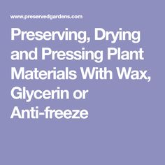 Preserving, Drying and Pressing Plant Materials With Wax, Glycerin or Anti-freeze