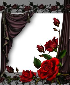 Curtains and Roses  by collect-and-creat.deviantart.com on @DeviantArt