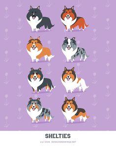 Shelties art print by doggiedrawings on Etsy