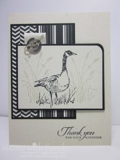 Stampin' Up! ... handmade card: Modern Wetlands ... black and white ... patterned papers ... goose amongst the grasses ... like the layout ...