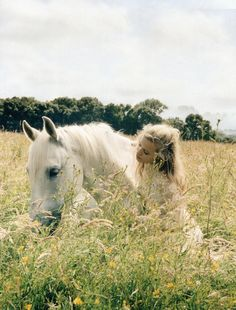 Fashion Editorial | English Summer Days  #dentelle #lace #champ #field #blanc #white #fleurs #flowers #cheval #horse