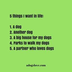 It's all about dogs! ♥