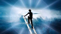 Self Improvement, Success, Thoughts, Concert, Face, Blog, Literatura, Biology, Concerts