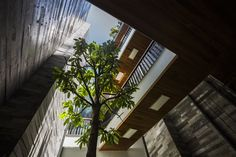 Gallery of Garden House / Ho Khue Architects - 25