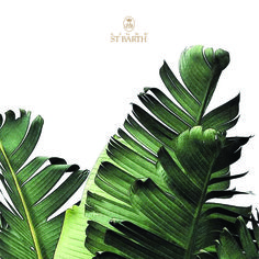 THE ST BARTH WAY OF LIFE  Enjoy the summer season in Caribbean style.  Discover more: www.lignestbarth.com  #LigneStBarth #natural #skincare #StBarth #TheSpiritofNature #naturalcosmetics #treatyourself #caribbean #summer #beauty