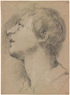 Attributed to Francesco Rustici | Head of a Youth | Drawings Online | The Morgan Library & Museum