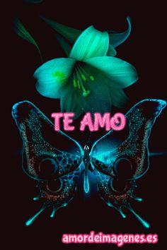 Imágenes de amor en movimiento con la frase te amo mariposa y flor