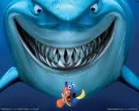 Resultado de imagen para animales del oceano