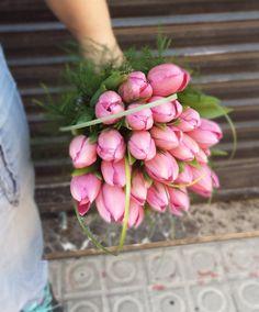 TUNDRA - Manoli.Bouquets. ramo de novia. wedding. Tulipanes. Tulip. Wedding Bouquets, Bridal Gown, Tulips, Bridal Bouquets, Brides, Wedding Brooch Bouquets, Wedding Flowers, Wedding Bouquet