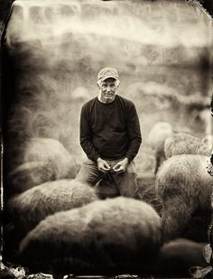 "Organic: Farmers & Chefs of the Hudson ValleyEugene Wyatt, Catskill Merino Sheep Farm: ""The government owns the word organic. I don't think the government can own a word"". (© Francesco Mastalia)"