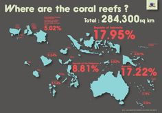 It's interesting to know where most of the world's coral reefs are. Courtesy of The Reef-World Foundation.  www.LivingColor.com  #CoralReefs #Aquariums #FishTankKings #LivingColor #Tanks #SeaLife
