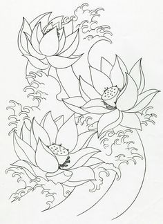 Lotus Flowers with water waves