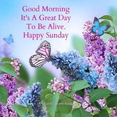 Good morning Happy sunday Pin from my friend Melissa❤️ Good Morning Happy Sunday, Blessed Sunday, Good Morning Good Night, Morning Wish, Good Morning Images, Happy Weekend, Sunday Pics, Sunday Prayer, Happy Sunday Quotes