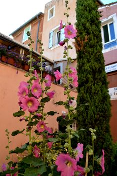 Rousillion - Provence