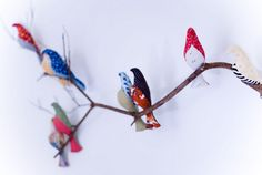 Birds on a branch.