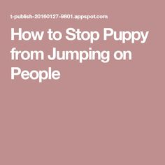 How to Stop Puppy from Jumping on People